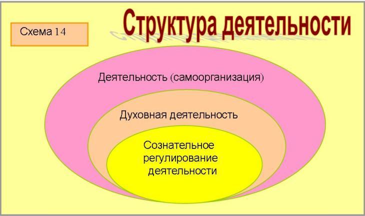 (деятельности людей,